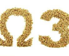 Omega 3 nenasičene maščobe