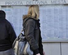 Zavod za zaposlovanje Nova Gorica – aktualna delovna mesta