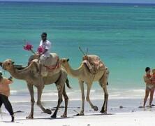 Zanzibar med turkiznim morjem in kulinarično ponudbo
