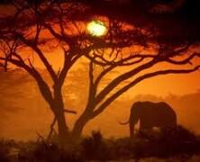 10 najzanimivejših znamenitosti v Keniji, ki jih ne smete zamuditi