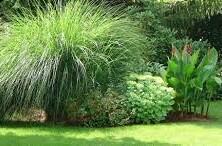 Vrt, prijetno s koristnim
