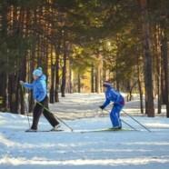 Zimske počitnice velja preživeti aktivno